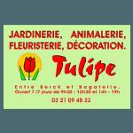 logo tulipe partenaire du trail des 2 baies